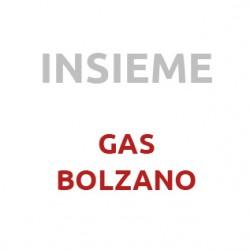 gas_insieme